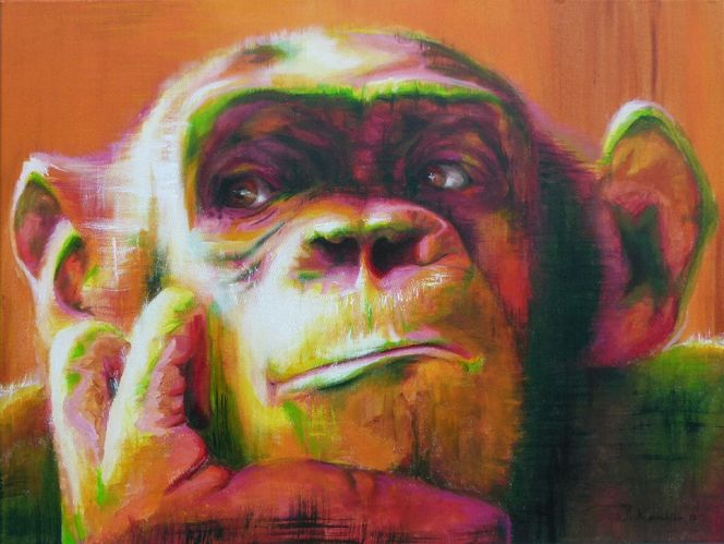 Menschenaffen, Denken, Denker, Schimpanse, Portrait, Affe