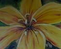 Lilie, Blumen, Gelb, Malerei