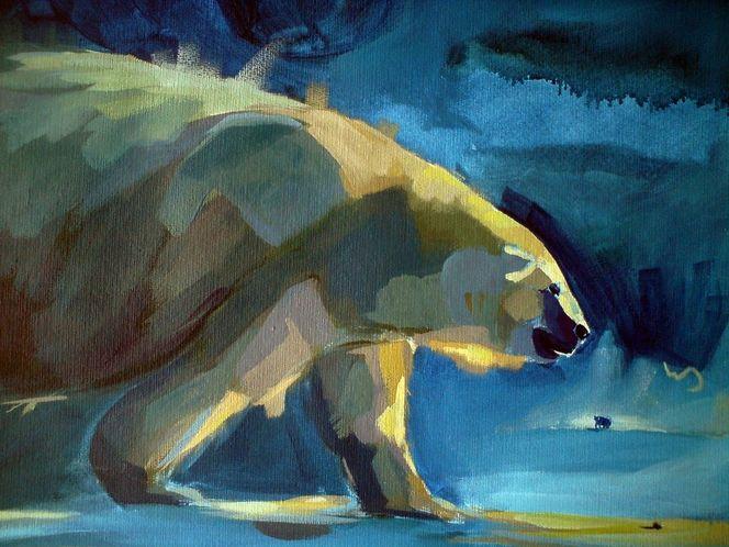 Bunt, Fell, Bär, Tiere, Eis, Blau
