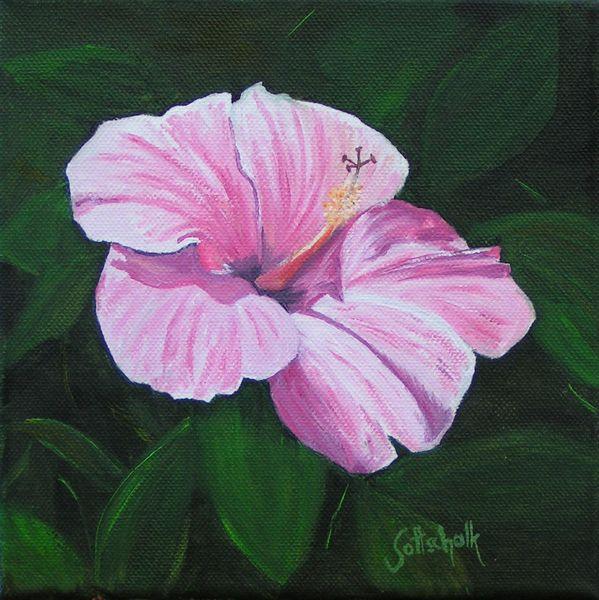 Blüte, Hibiskus, Ölmalerei, Pflanzen, Malerei