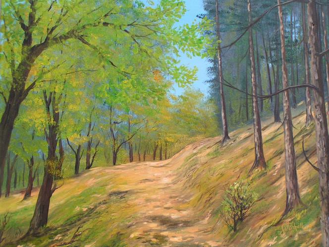 Hang, Sommer, Wald, Waldweg, Malerei
