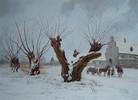 Winter, Baum, Schnee, Wächter