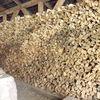 Sususannegottschalk, Holz, Rakuofen, Fotografie