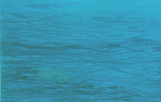 Ozean, Wasserwelten, Artmaritim, Dateline, Meer, Meerblick