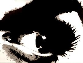 Schwarzweiß, Augen, Mischtechnik, Diverses