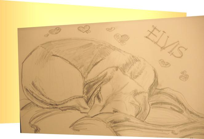 Zeichnungen, Portrait, Elvis