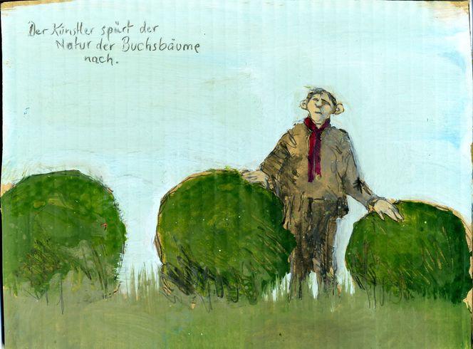 Buchsbaum, Spüren, Zeichnungen, Natur,