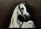 Malerei, Pferdezeichnung, Tiermalerei, Pferde