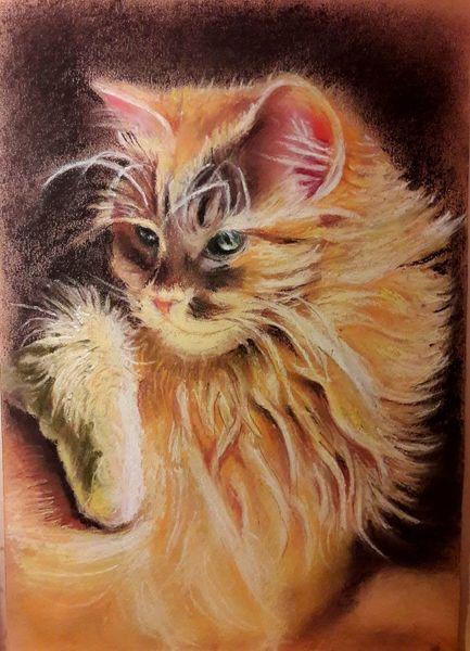 Rot, Gesicht, Langhaarig, Katze, Schönheit, Malerei
