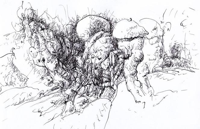 Freude, Glück, Metamorph, Federflug, Pilze, Zeichnungen