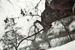 Analog, Schnee, Winter, Schwarz weiß