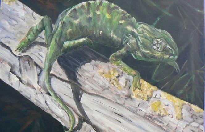 Chamäleon, Natur, Tiere, Malerei, Weg
