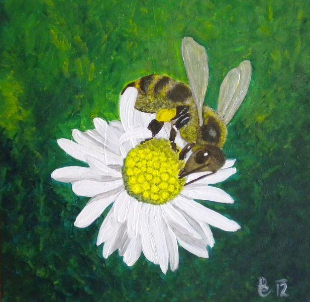Biene, Grün, Acrylmalerei, Gänseblümchen, Malerei, Tiere