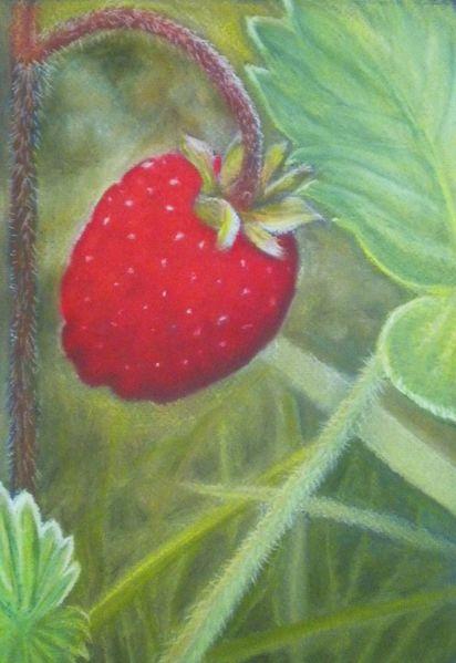 Erdbeeren, Rot, Walderdbeere, Wald, Pastellmalerei, Grün