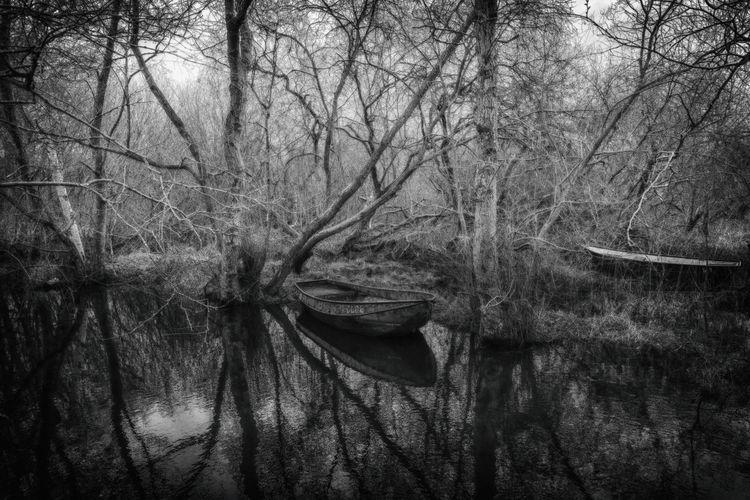 Moor, Boot, Schwarz, Wasser, Weiß, Landschaft