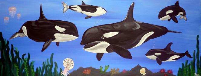 Schwertwal, Meer, Tiere, Unterwasser, Wal, Malerei