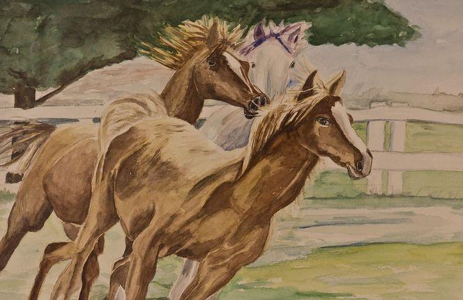 Pferde, Aquarell, Tiere
