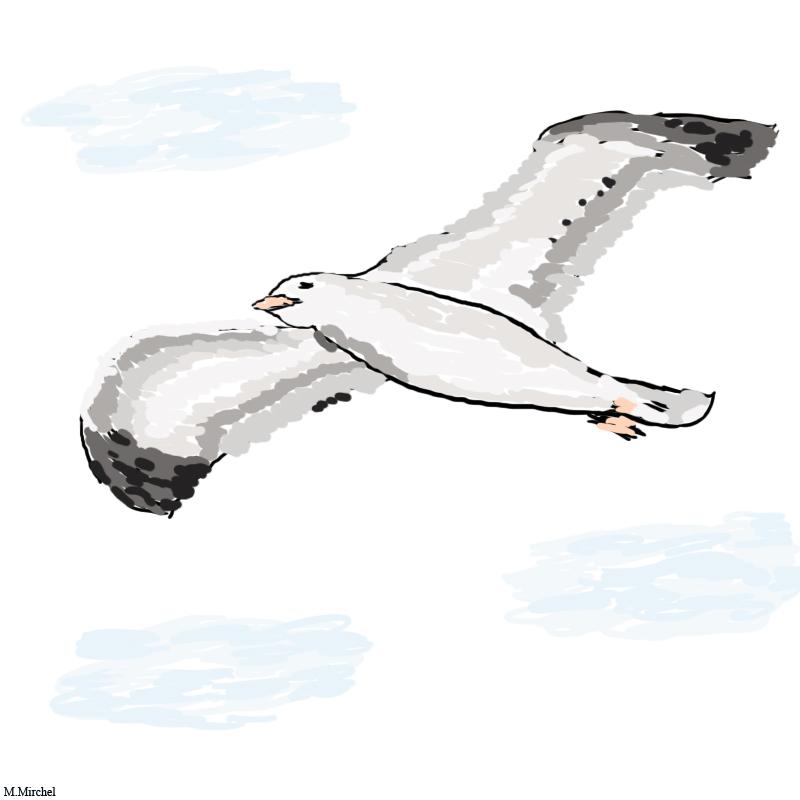Mwe Im Wind Sommer Mwe Wind Wolken Von Moonspell Bei KunstNet