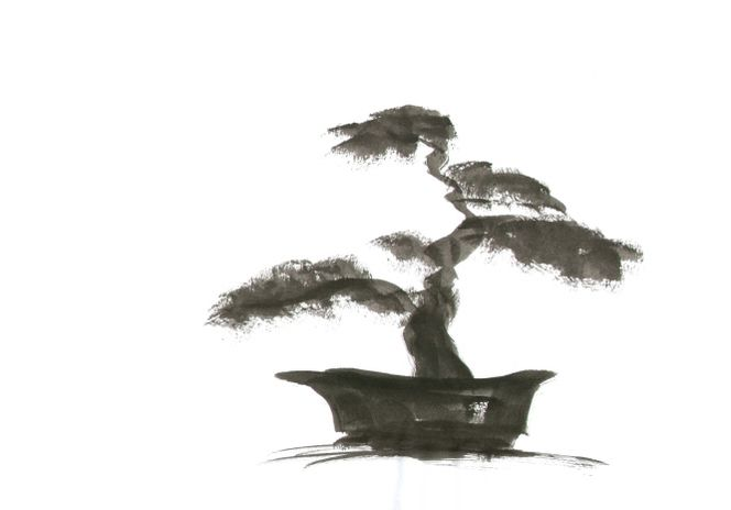 bild bonsai baum gartenkunst japanisch von edita bei kunstnet. Black Bedroom Furniture Sets. Home Design Ideas