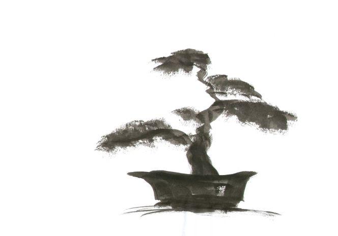 bild bonsai baum gartenkunst tuschpinselzeichnung von edita bei kunstnet. Black Bedroom Furniture Sets. Home Design Ideas
