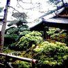 Japanisch, Posterisation, Garten, Japanischer garten