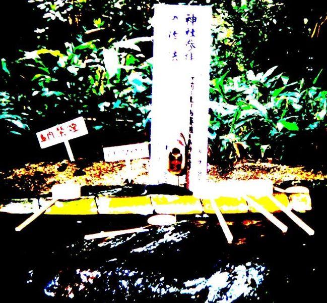 Wasser, Buddhismus, Brunnen, Japan, Kelle, Tempel