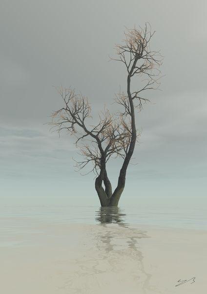 Baum, Traum, Wasser, Fantasie, Zeitgenössisch