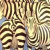 Wasserloch, Wildtiere, Zebrastreifen, Tierwelt