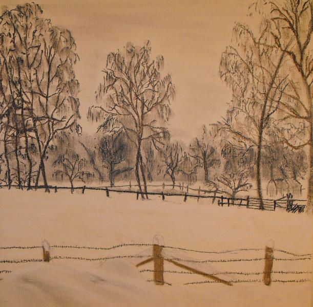 Zeichnungen, Birken, Schnee,