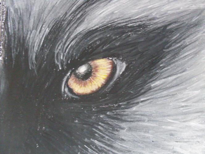Kreide, Augen, Pastellmalerei, Wolf, Zeichnungen, Tiere