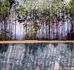 Malerei, Ganzes, Wald