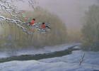 Vogel, Bach, Schnee, Landschaft