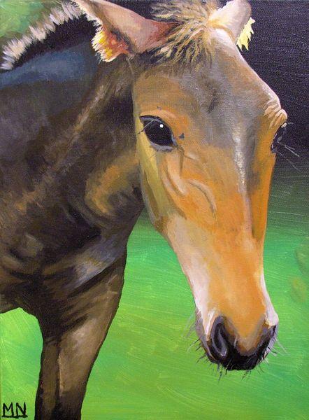 Pferde, Weide, Tiere, Portrait, Malerei