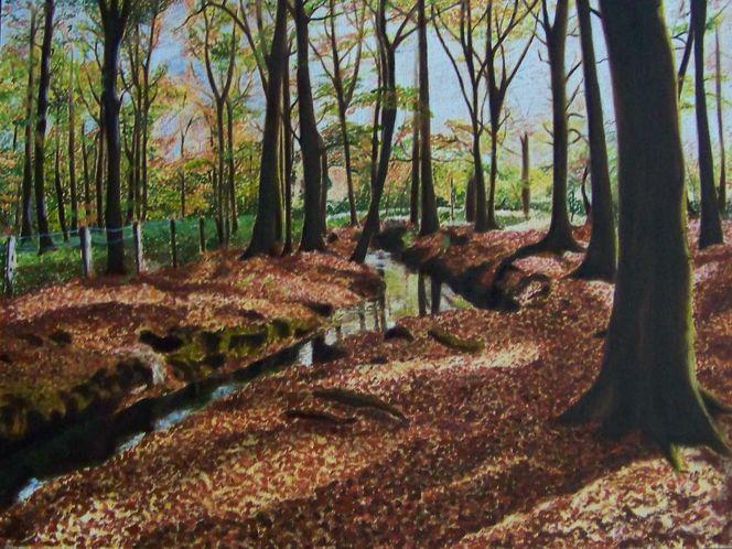 Realismus, Bach, Licht, Schatten, Herbstwald, Spiegelungen herbst