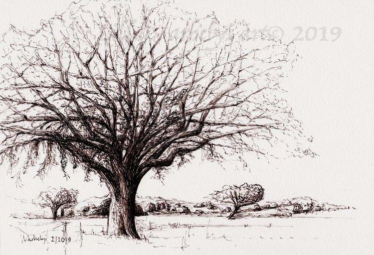Baum, Monochrom, Umbra, Studie, Tuschmalerei, Natur