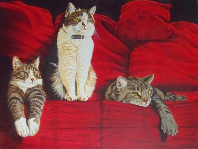 Sofa, Tierportrait, Katze, Rot, Harzölmalerei, Tiere