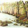 Stein, Tuschmalerei, Moos, Landschaft