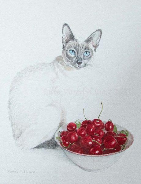 Siamkatze, Kirsche, Stillleben, Katze, Tuschmalerei, Zeichnungen