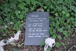 Friedhof, Schädel, Gedicht, Klima