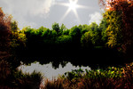 Schön, Natur, Sommer, Fotografie