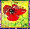 Blüte, Mohn, Digitale kunst