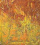 Zofingen, Pollock, Farben, Abstrakt, Modern, Rauschnenberg