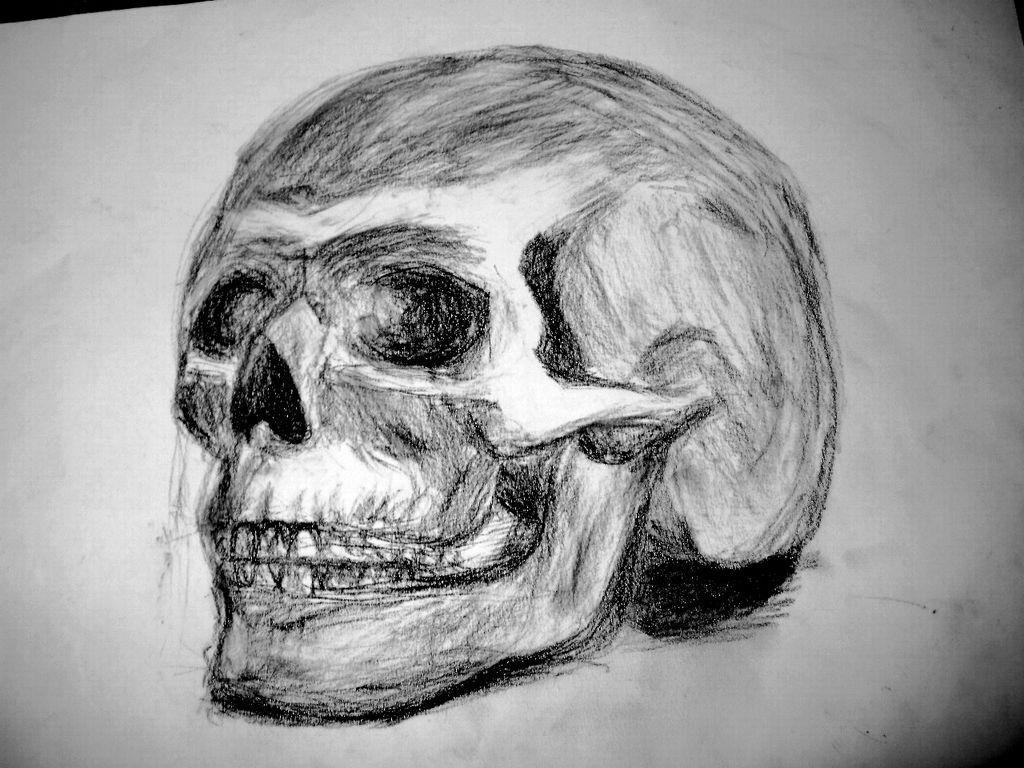 Schädel Zeichnung - 195 Bilder und Ideen - gezeichnet - auf KunstNet