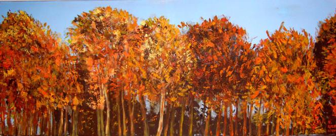 Sonnentag, Wald, Herbst, Farben, Leuchten, Malerei