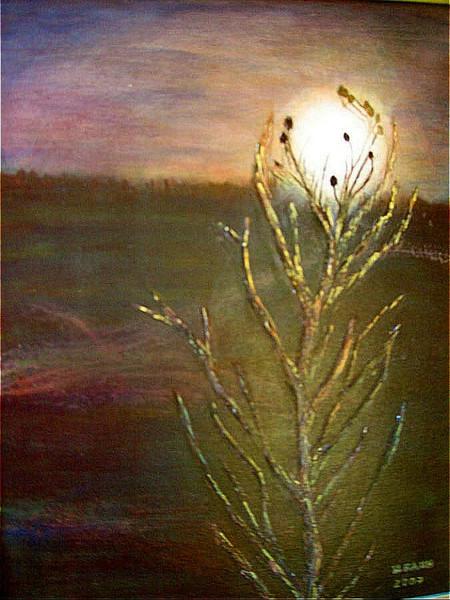Dämmerung, Mondaufgang, Mystik, Mondschein, Ruhe, Malerei