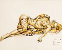Zeichnungen, Surreal, Tiger