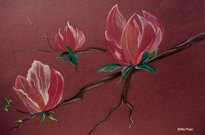 Fliederbaum, Frühling30 x 45, Blumen, Natur, Zeichnungen, Magnolien