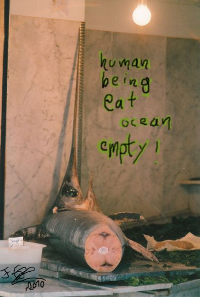 Ozean, Fotografie,