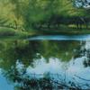 Natur, Landschaft, Malerei