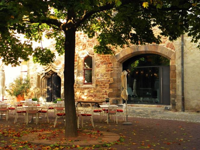Lokal, Kunstfotografie, Halle, Baum, Saale, Kunstmuseum